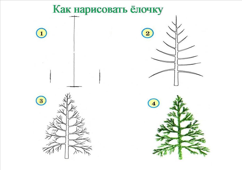 Как нарисовать дерево картинки поэтапно