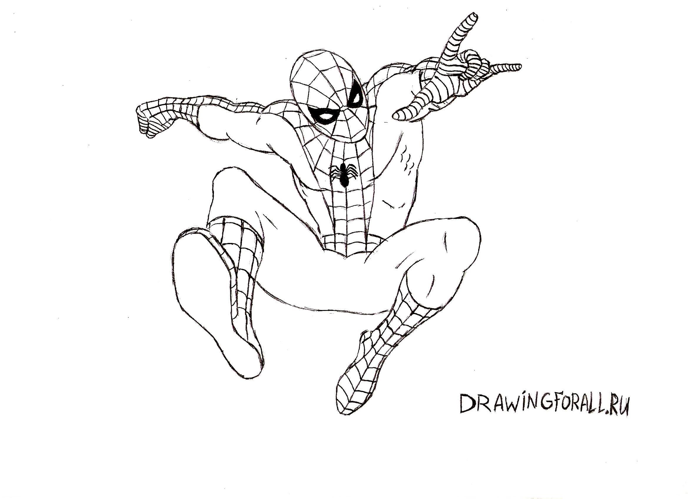 Картинки для рисование человек паук
